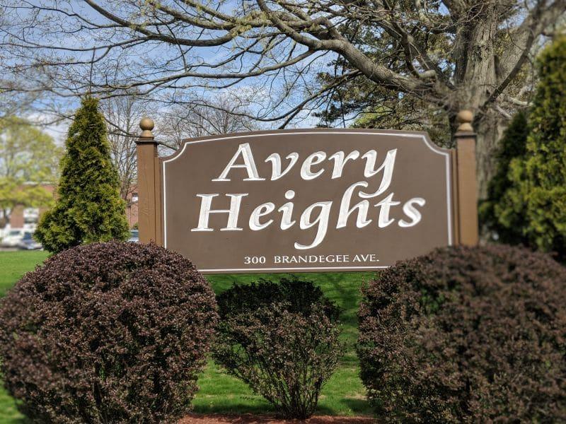 Averyphotos011